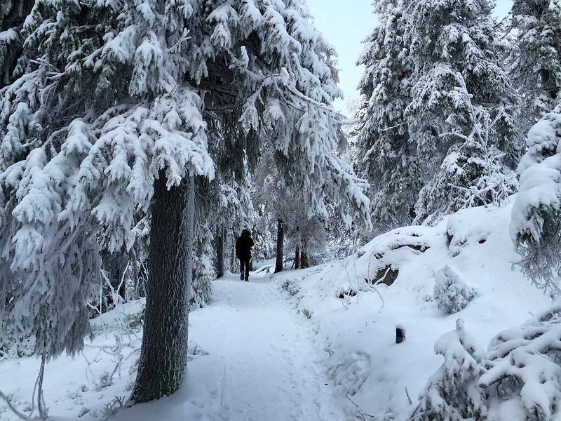 (Easy Walking Routes And Wonderful Views. What More Could You Want From The  Finnish Winter Time. )