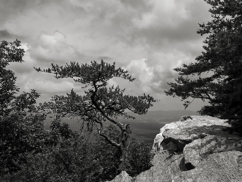 park sky usa mountain mountains monochrome rock pine america forest montagne landscape lumix rocks mood state cloudy outdoor horizon alabama champs bald shapes atmosphere stormy pins hills panasonic mount ciel national fields serene paysage bonzai montagnes ambiance plaine collines nuageux cheaha formes baldrock cheahastatepark forets orageux tallageda dmcfz150 tallagedanationalforest
