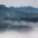 Mist over Mount Edgcumbe by snowyturner