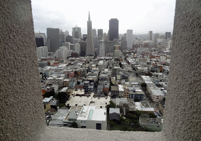 coit-tower-view-transamerica