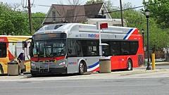 WMATA Metrobus 2015 New Flyer Xcelsior XN40 #2851