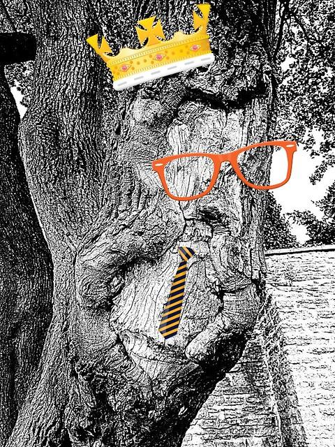 peikkopuu