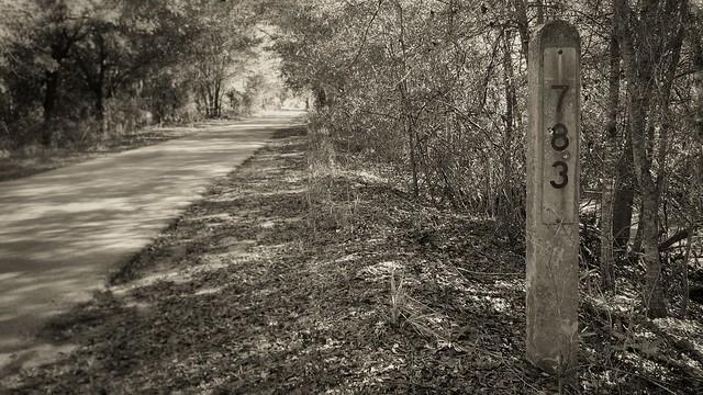 04/01 783 Van Fleet Trail