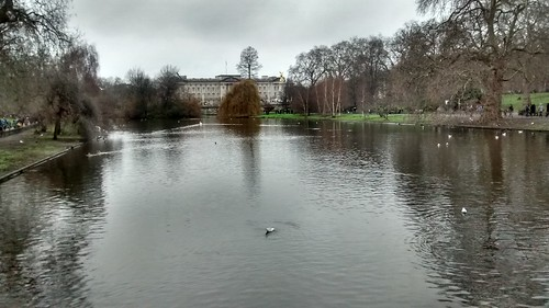 St James's Park London Jan 16 (3)