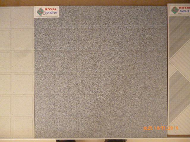 SEK9DS415, Panasonic DMC-FH2