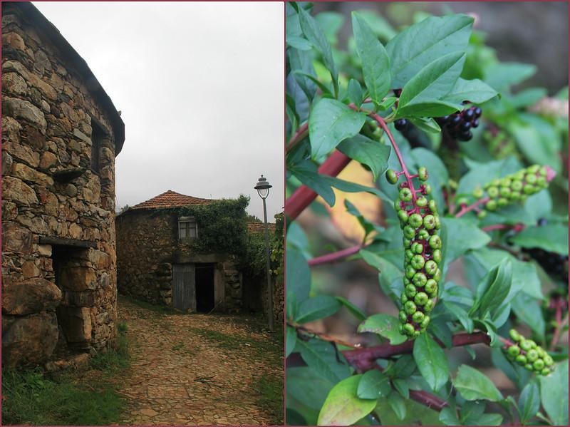 Couce village, Porto