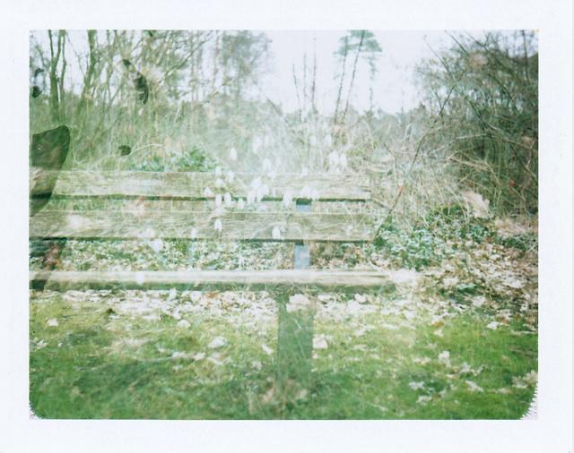 Frühling/ Spring's coming II - I shot film