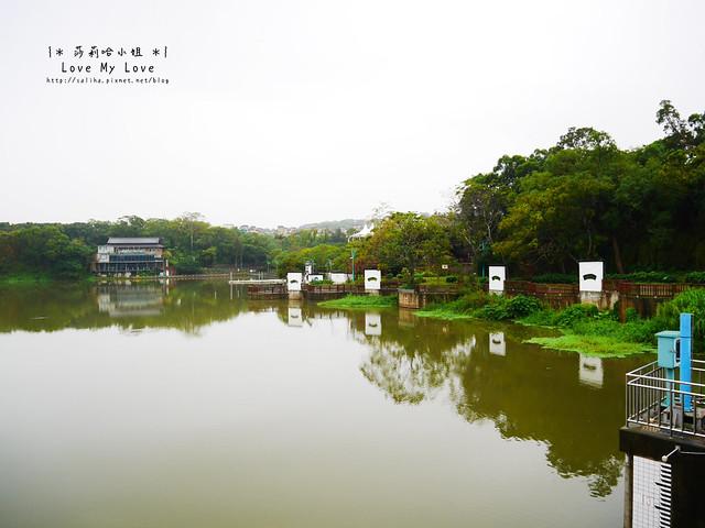 新竹一日遊景點青草湖 (11)