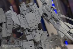 WF2016_TT-18