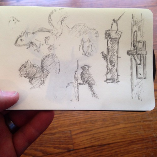 Sketching moving critters at Springfield Conservation Nature Center.