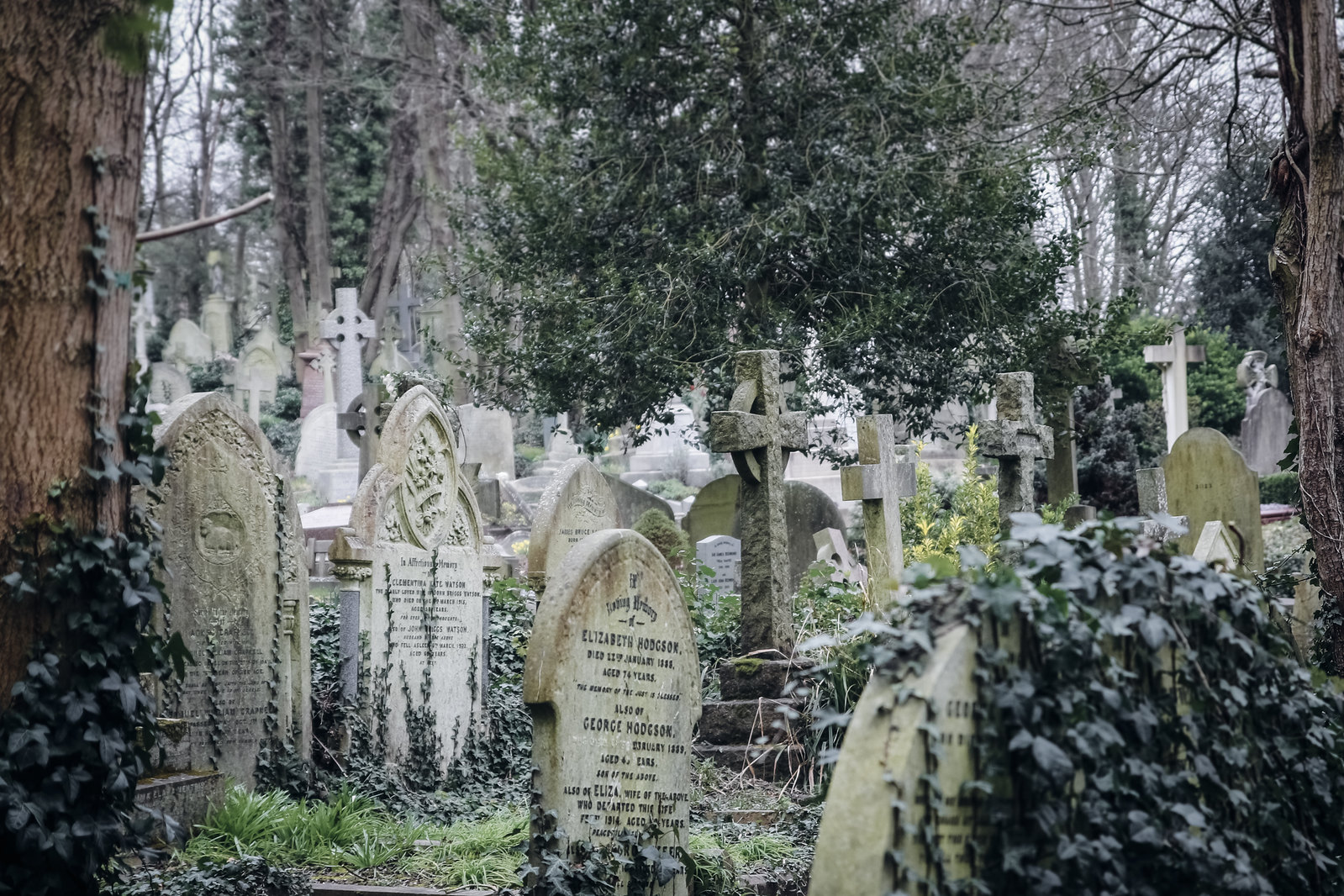 highgate cemetery, old cemetery, highgate