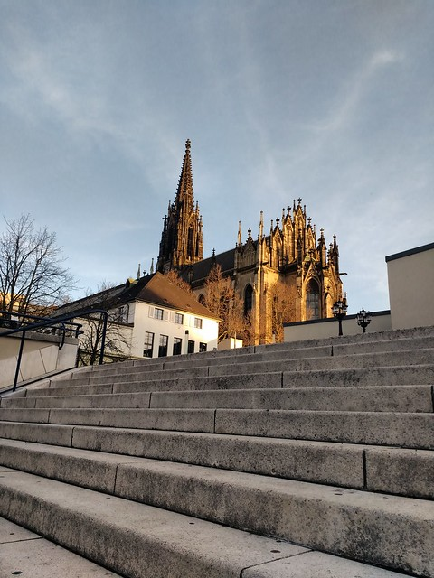 elisabethenkirche in the evening sun