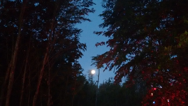 Christmas Eve Supermoon in Pucón, Chile
