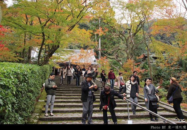 京都-永觀堂126
