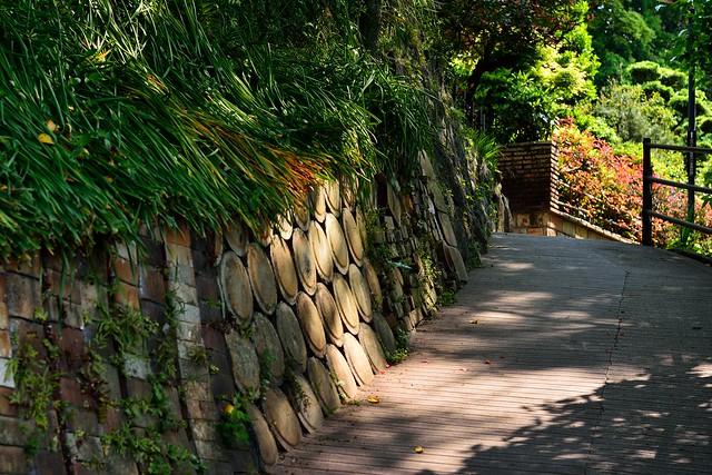 窯垣の小路1