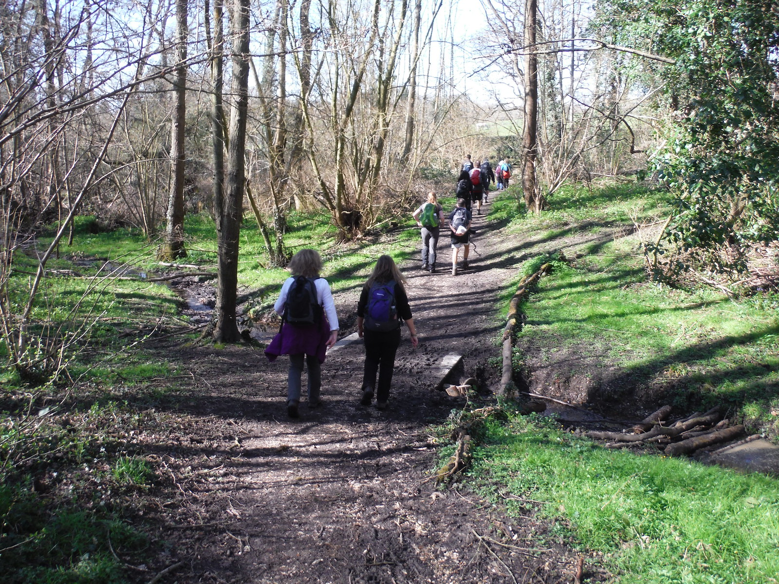 Through Old Copse, Beenham SWC Walk 260 Aldermaston to Woolhampton [Midgham Station] (via Frilsham)