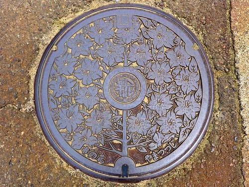 Arai Nigata, manhole cover (新潟県新井市のマンホール)