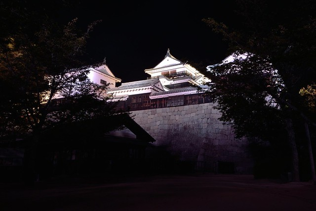 松山城夜景2