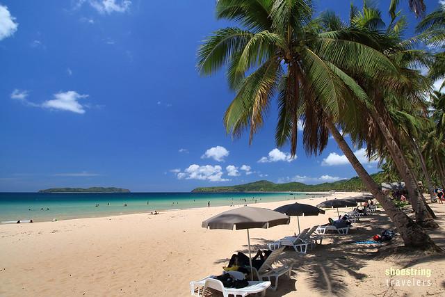 coconut palms at central Nacpan Beach