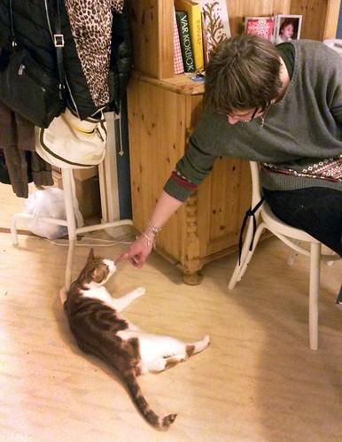 bjorns_sverigexmas-cocotesscats3