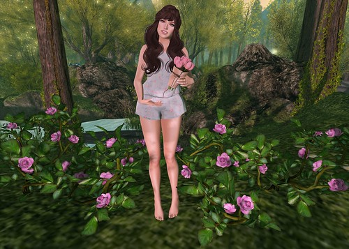 Roses - Lolita Oleander