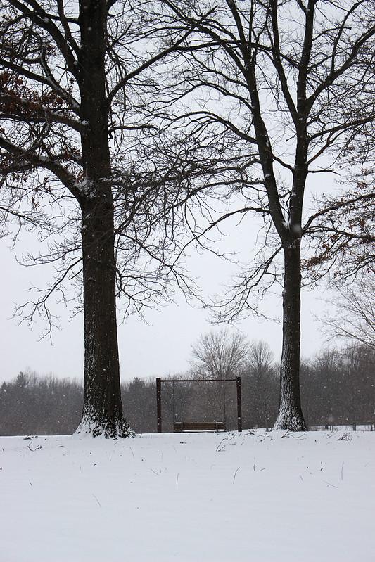 Snow at Homer Lake