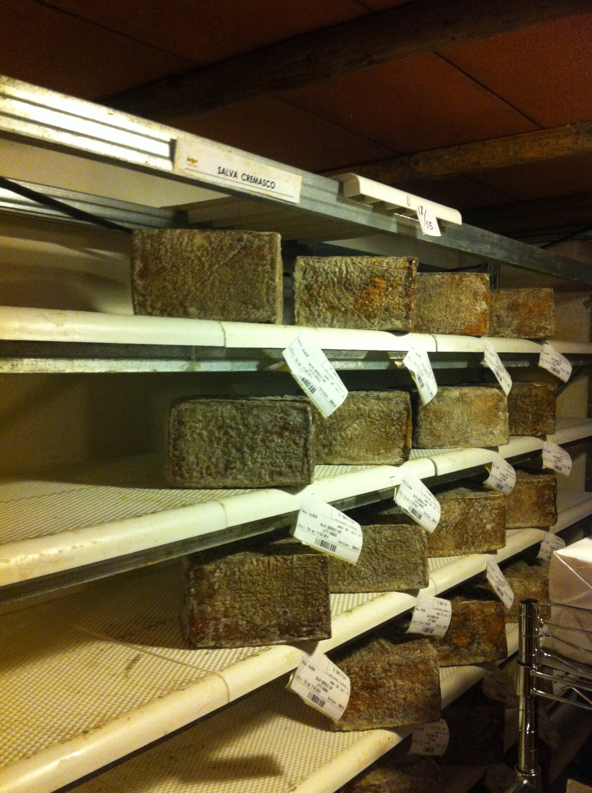A Trip to a Cheese Cave, Arona, Piedmont, Italy 9