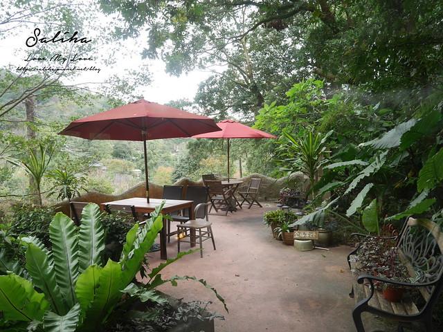 陽明山不限時景觀餐廳下午茶推薦19號咖啡館 (8)