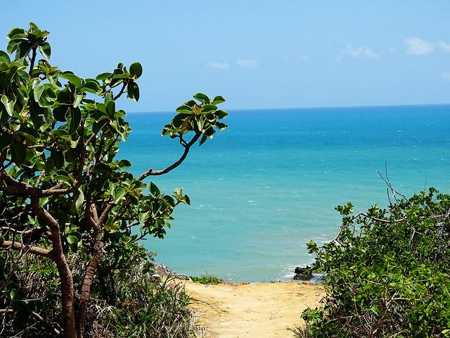 Praia de Tambaba, PB {janeiro 2016}