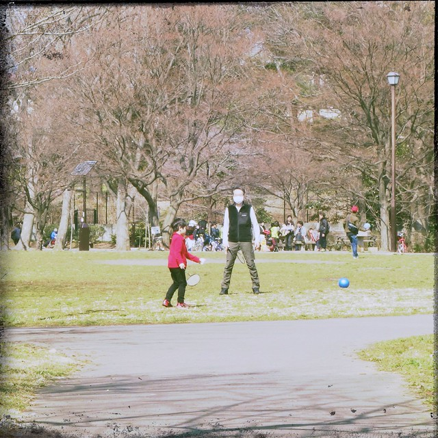 Father and Boy playing badminton in park