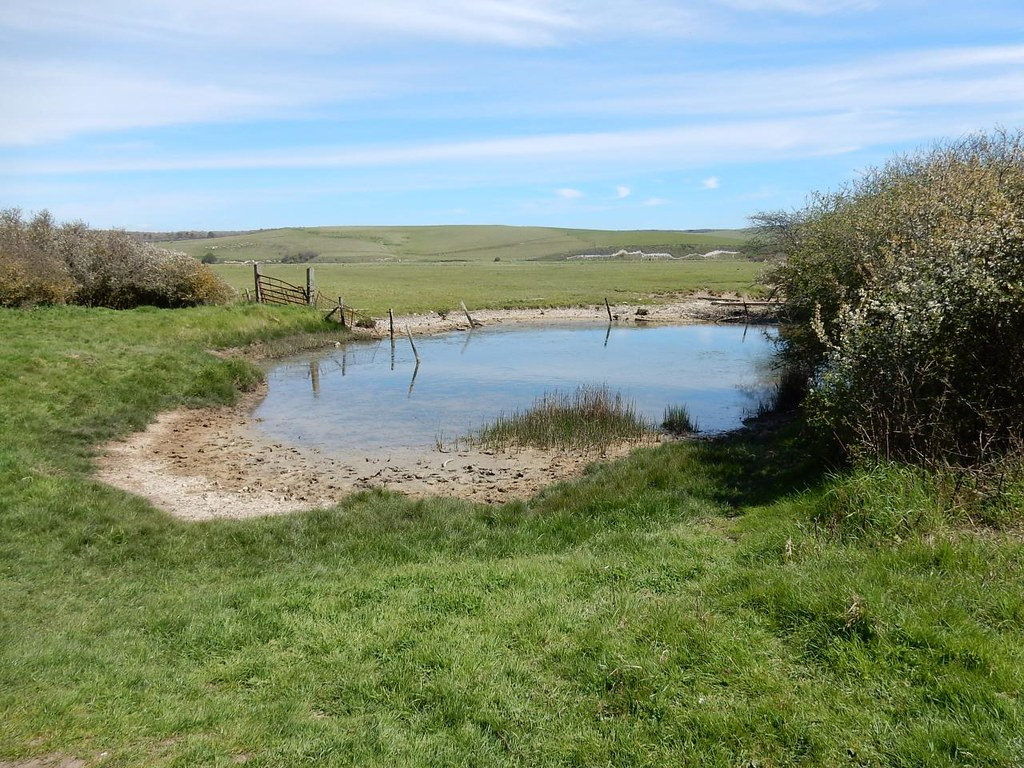 Pond, Cuckmere Haven Seaford to Eastbourne