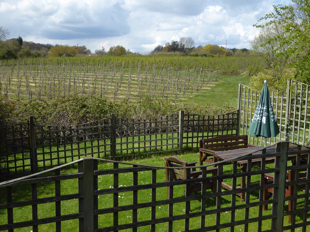 The garden of the Chapter Arms in Chatham Hatch Chilham to Canterbury walk