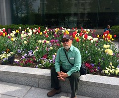Ali rests by gardens of Temple Square, Photo by CRudin