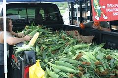 2015 Saxony Market Corn Day!