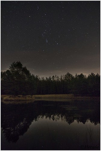 Orion (HP001403)