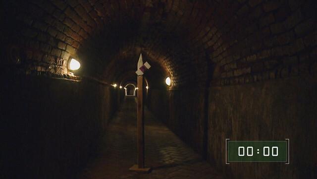 Hint ondergronds