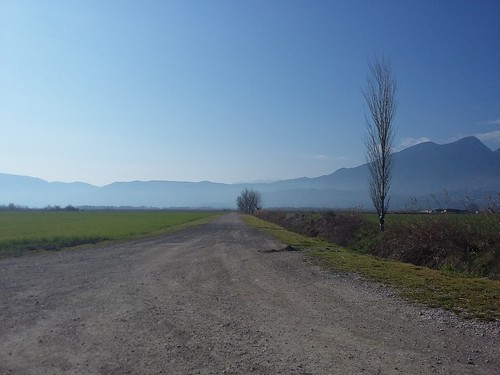 road morning sun fields soclosetothecity