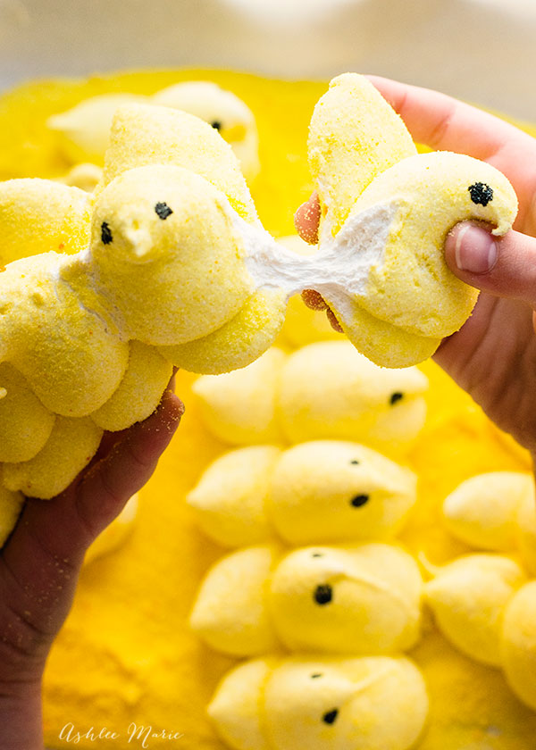 a video tutorial on making homemade marshmallow peeps