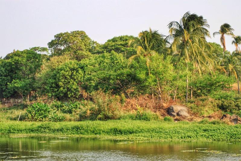 The volcanic islands in Nicaragua