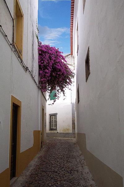 Una calle, Évora. © Paco Bellido, 2004