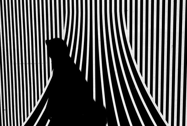 Struggle and stripe