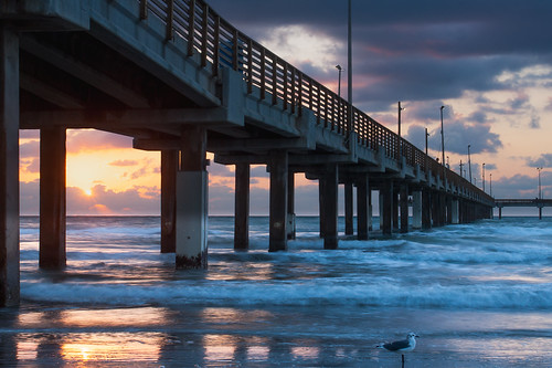 sea usa beach gulfofmexico sunrise pier fishing texas seagull earlymorning portaransas keepers horacecaldwellpier