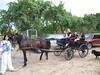 sommerfest-2012---5_7738683492_o