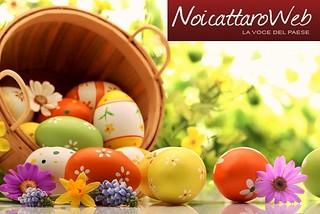 Noicattaro. Auguri Pasqua 2016 front