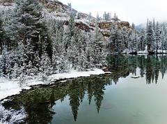 Still Waters, Fresh Snow, Yosemite NP 5-15