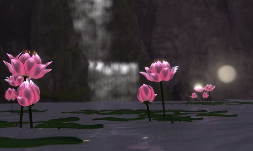 Serenity: Lotus Lights