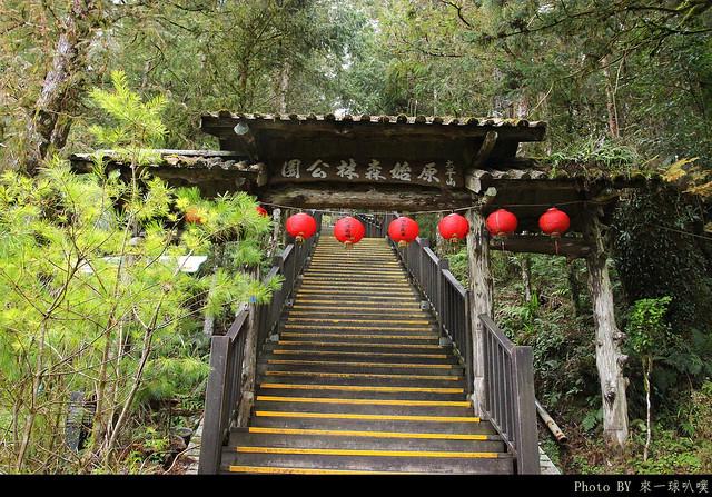 太平山步道12