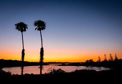 Rotness Sunset - 356/365