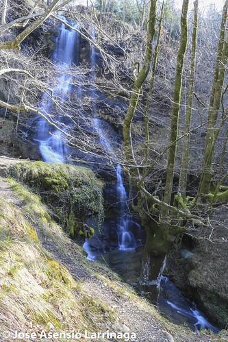 Parque Natural de Gorbeia  #DePaseoConLarri #Flickr -3095
