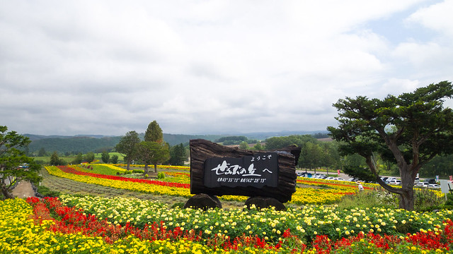 Hokkaido day6 01